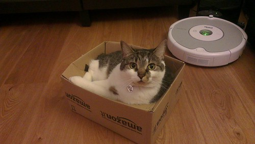 Ping claims the Amazon box