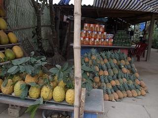 パイナップル産地
