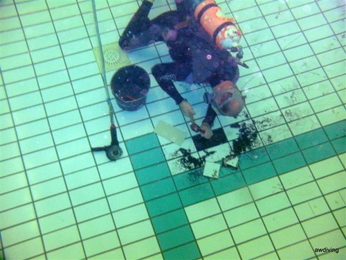 Duikbedrijf AWDIVING :Verwijderen van oude zwembad tegel