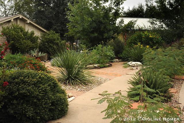 Neighboring Matthews & Doyle gardens
