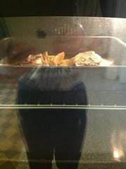 Pesce spada al forno con patate - cottura