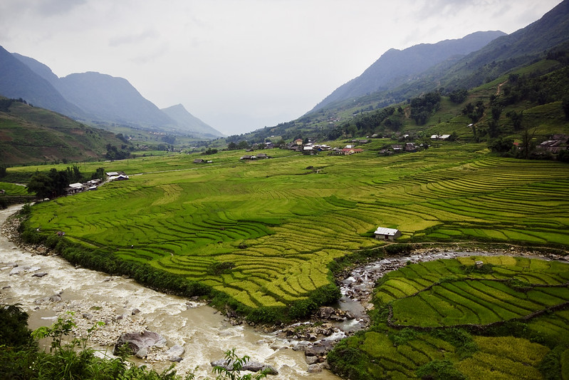 Rice terraces in Sapa2