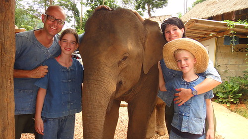 Us and our elephant