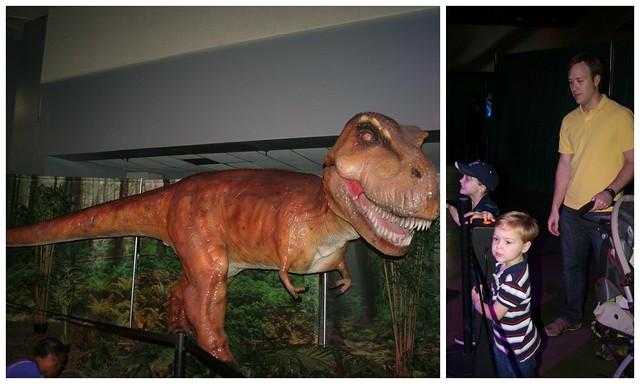 Dino Exhibit4