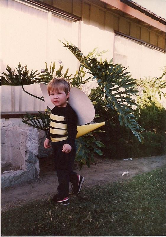 1987 bumble bee costume