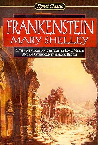 mary shellys frankenstein essay
