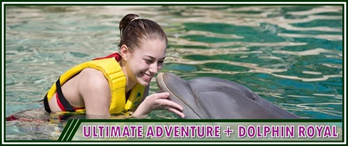 Ultimate Adventure Package + Dolphin Royal by Dolphin Discovery