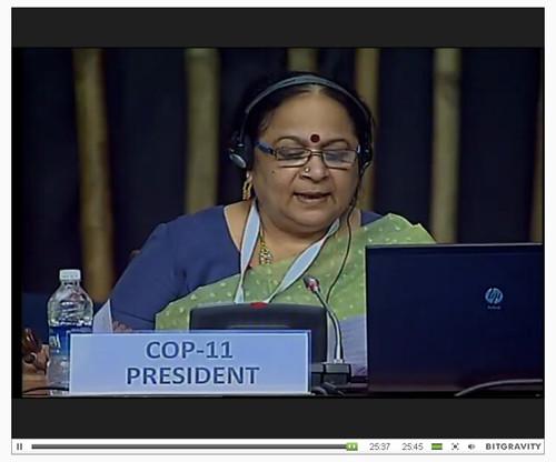 #COP11 President