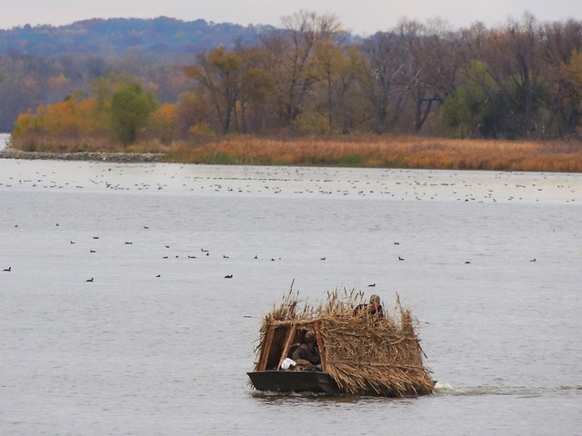 Borderlands  Wildlife Preservation Locked Room
