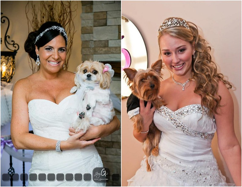 Bridal Styles brides and their dogs