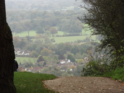 View of Surrey Hills