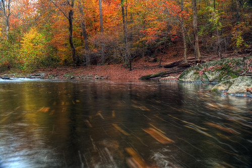 longexposure autumn fall colors waders calmbeforethestorm rockcreekpark rockcreek beachdrive ef2470f28lusm inthestream leaftrails canon5dmkii october2012 edwardkreis dkiphotography singhrayvarintrio streamcatcher