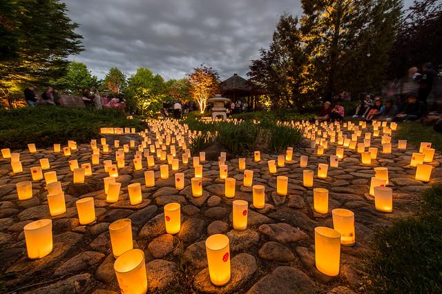 nara, candle, festival