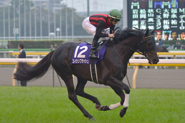 Eishin Flash, entering track