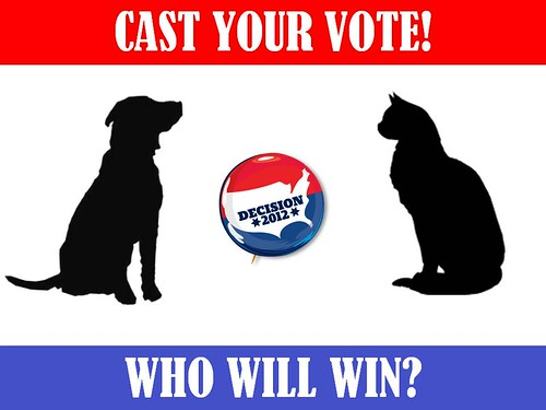 Cats versus Dogs - Decision 2012