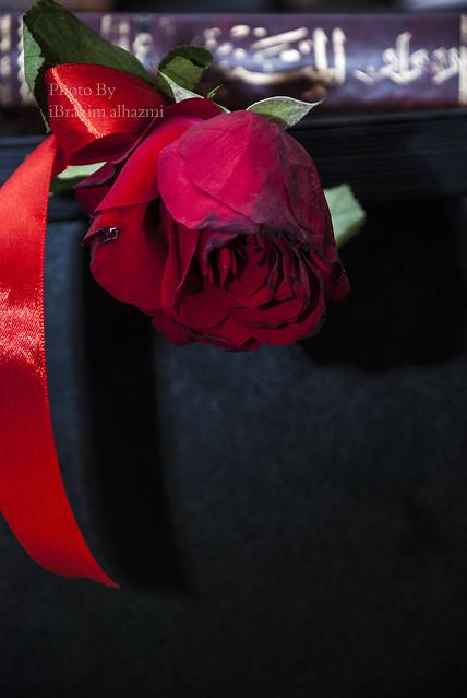 جيزان ليلا بعيد الأضحى 1433هـ بعدستي Nikon D80