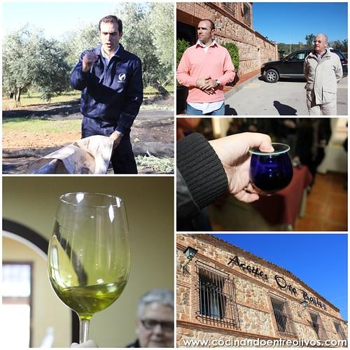 Bloggers Jaén Virgen Extra 2.0 (14)