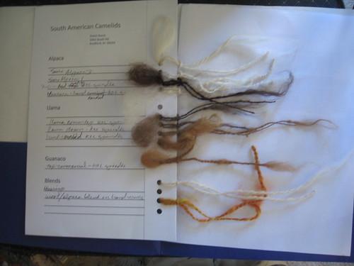 Camelid spinning sampler