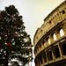 Taizé. Rome. Colosseum 023