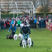 Dogmanay Dog Races - Edinburgh, Scotland
