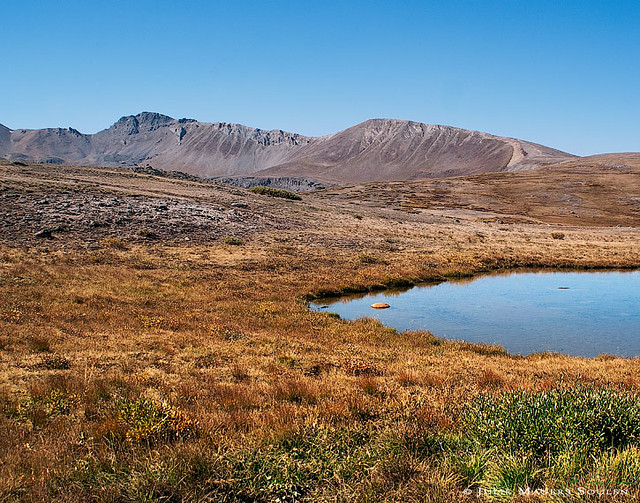 Mountain landscape photo, of the alpine tundra and a small spring fed lake at the top of Independence Pass, Colorado.