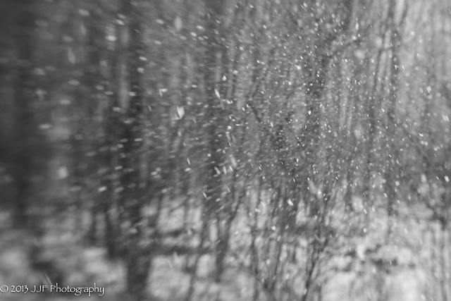 2013_Jan_28_Lens Baby Snow_012