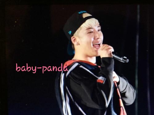 Big Bang - Made Tour - Tokyo - 13nov2015 - Baby Panda - 10