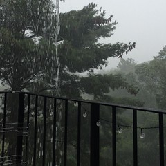 Flash falls. #rainyday