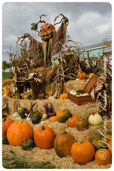 Scarecrow-Pumpkins