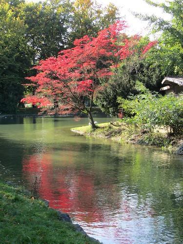 08.10.12 Japanisches Teehaus, Englisher Garten, Munich