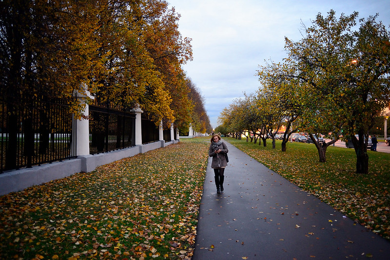 University road in autumn