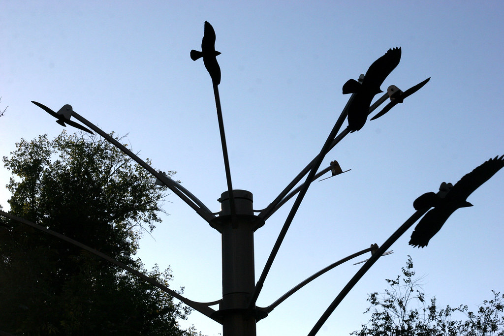aviary sculpture