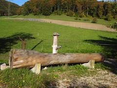 Brunnen in Küttigen