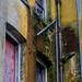 Photo Walk 2012-1275.jpg