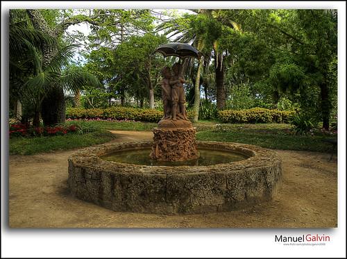 En el Parque by galvin2008