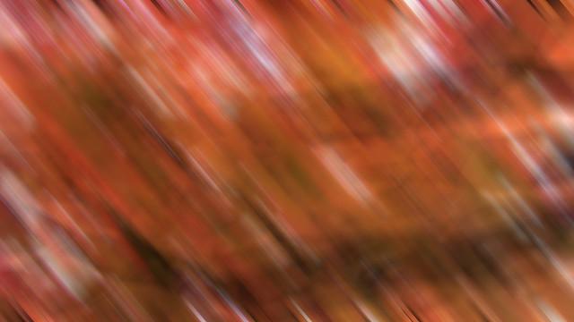 Herbst / Autumn - #3