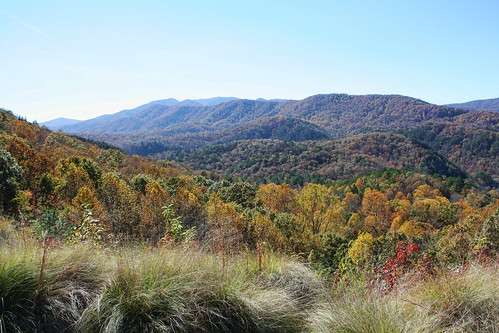autumn trees mountains fall tennessee overlook