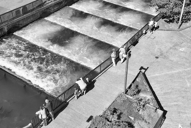 Fish ladder bonneville dam cascade locks or september for Bonneville dam fish camera