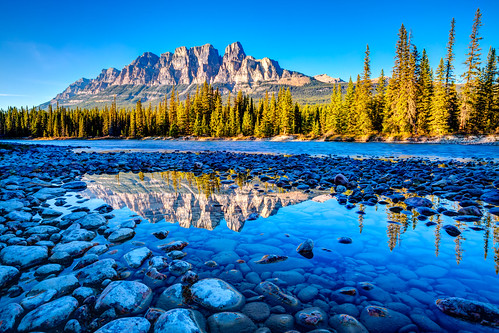 park travel blue autumn wild summer mountain plant canada green castle nature water ecology pine forest woodland river landscape outdoors nationalpark woods scenery pretty natural hill scenic rocky vivid peak scene national destination environment banff wilderness habitat parkland castlemountain