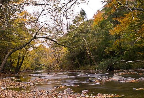 autumn fall water leaves colorful dusk kentucky timeexposure streams creeks middlesboro nikond60 bellcounty backroadphotography kjerrellimages