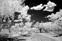 Keep River National Park in Infrared