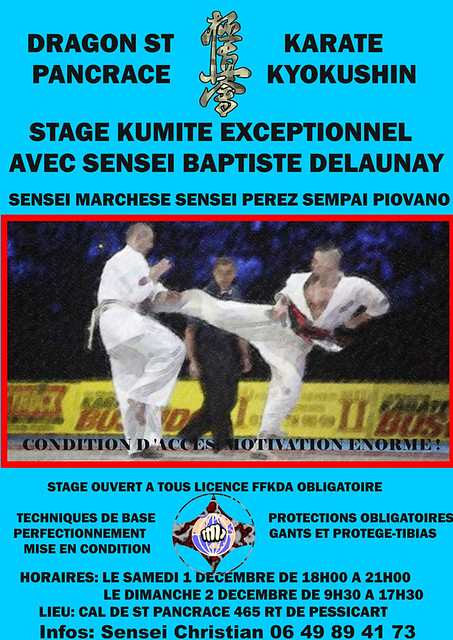 121201_stage_kumite_delaunay_st_pancrace