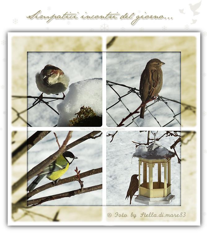(c) Foto e grafica by Stella.di.mare83 - http://blog.libero.it/ibattitidelcuore