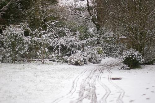 (neige)