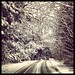Small photo of Snowy lane