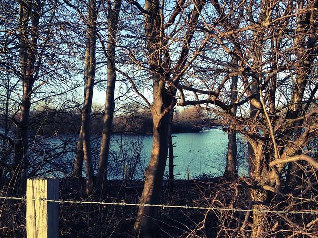 Blunham Lake