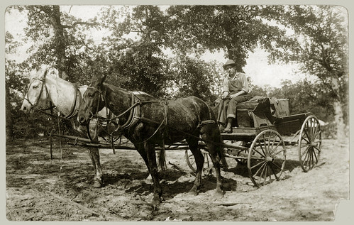 Two horses and wagon