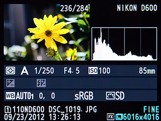 Ten Tips and Tricks for the Nikon D610 / D600 | Picturing Change