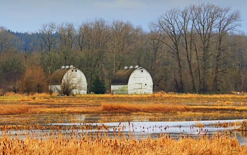 building water barn rural canon landscape farm structure washingtonstate nisqually t4i matthewreichel