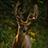 Dustin Weber - @DustinWeberPhotography - Flickr